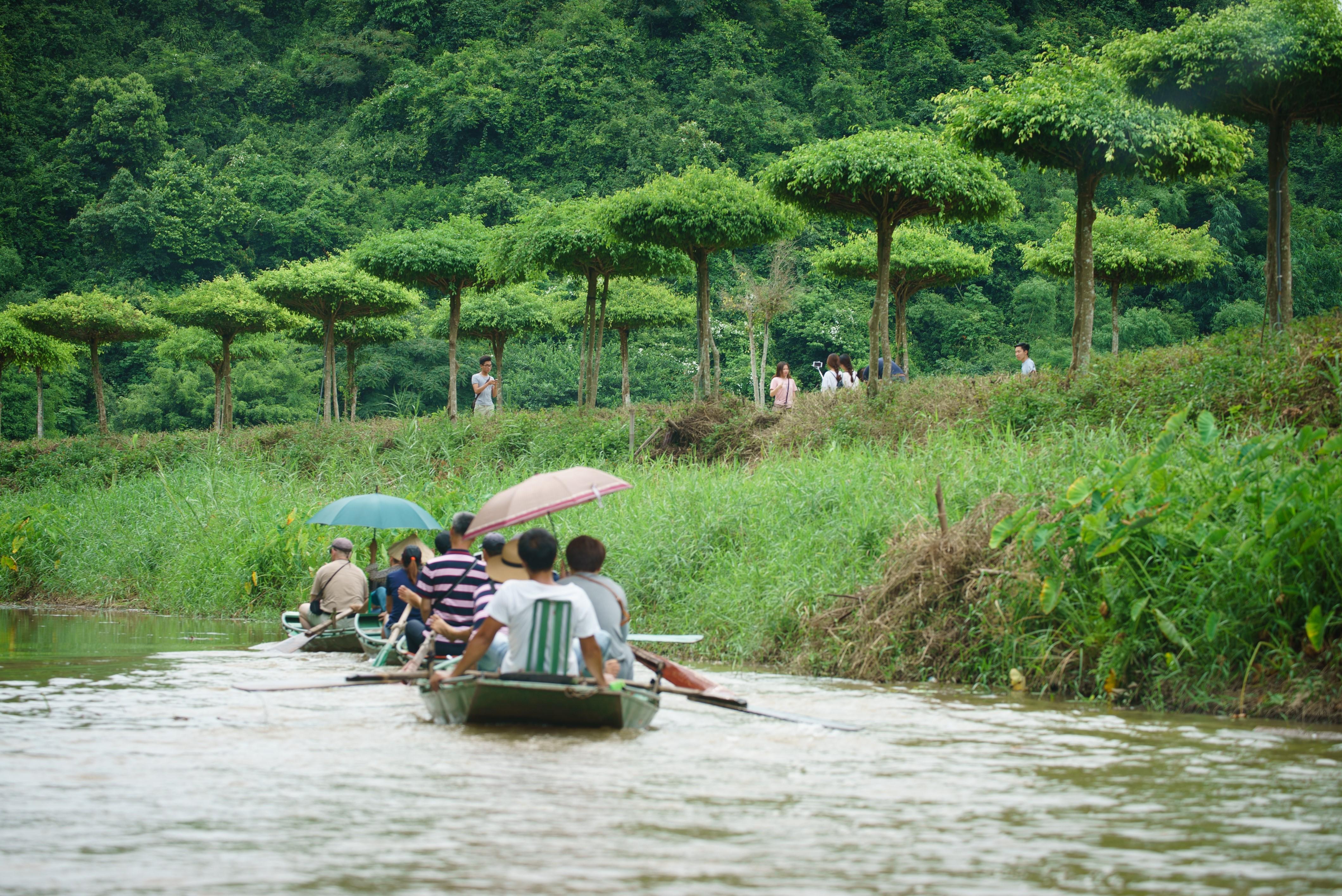 Boat tour in Tam Coc