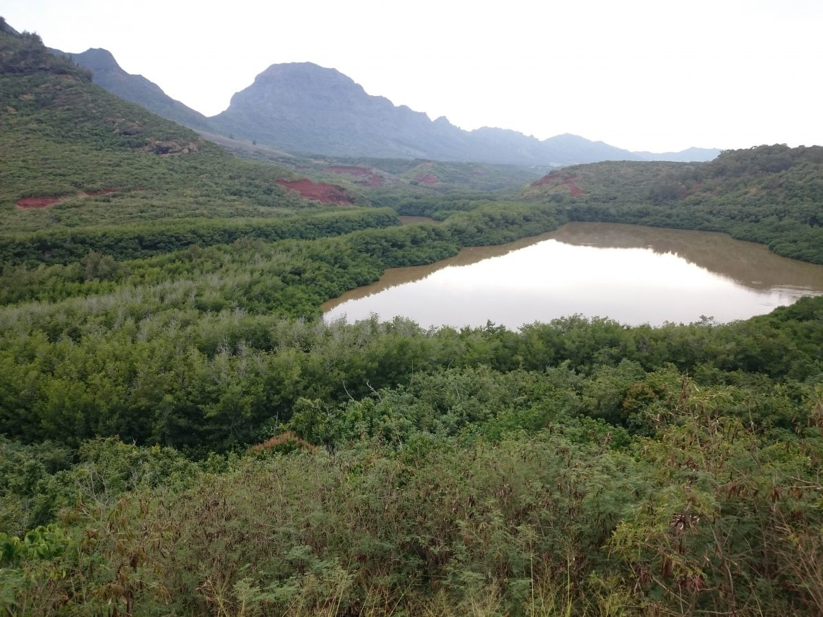 Menehune fishpond in Kauai, Hawaii