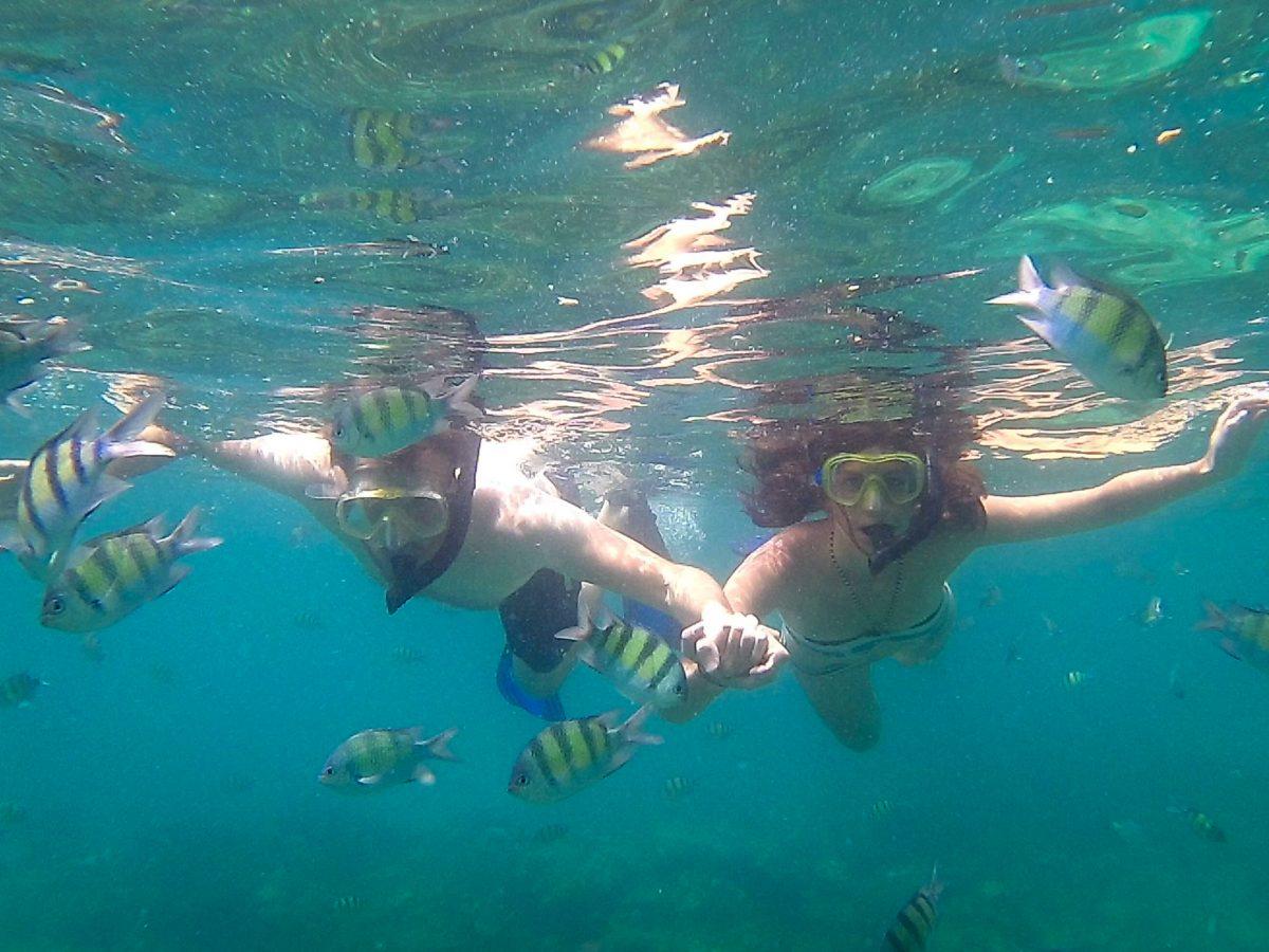 Snorkelling in Koh Phi Phi Leh