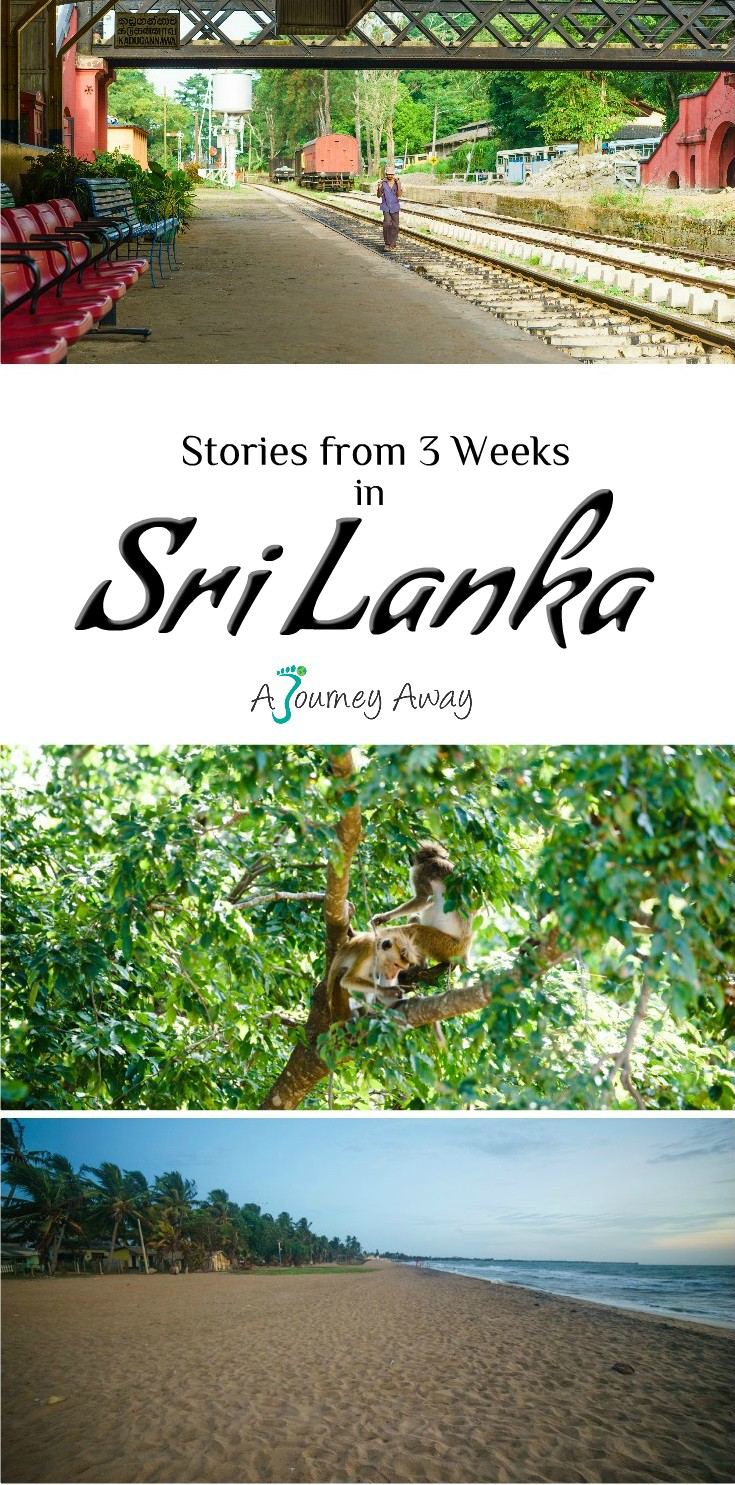 Stories from 3 Weeks in Sri Lanka | A Journey Away travel blog