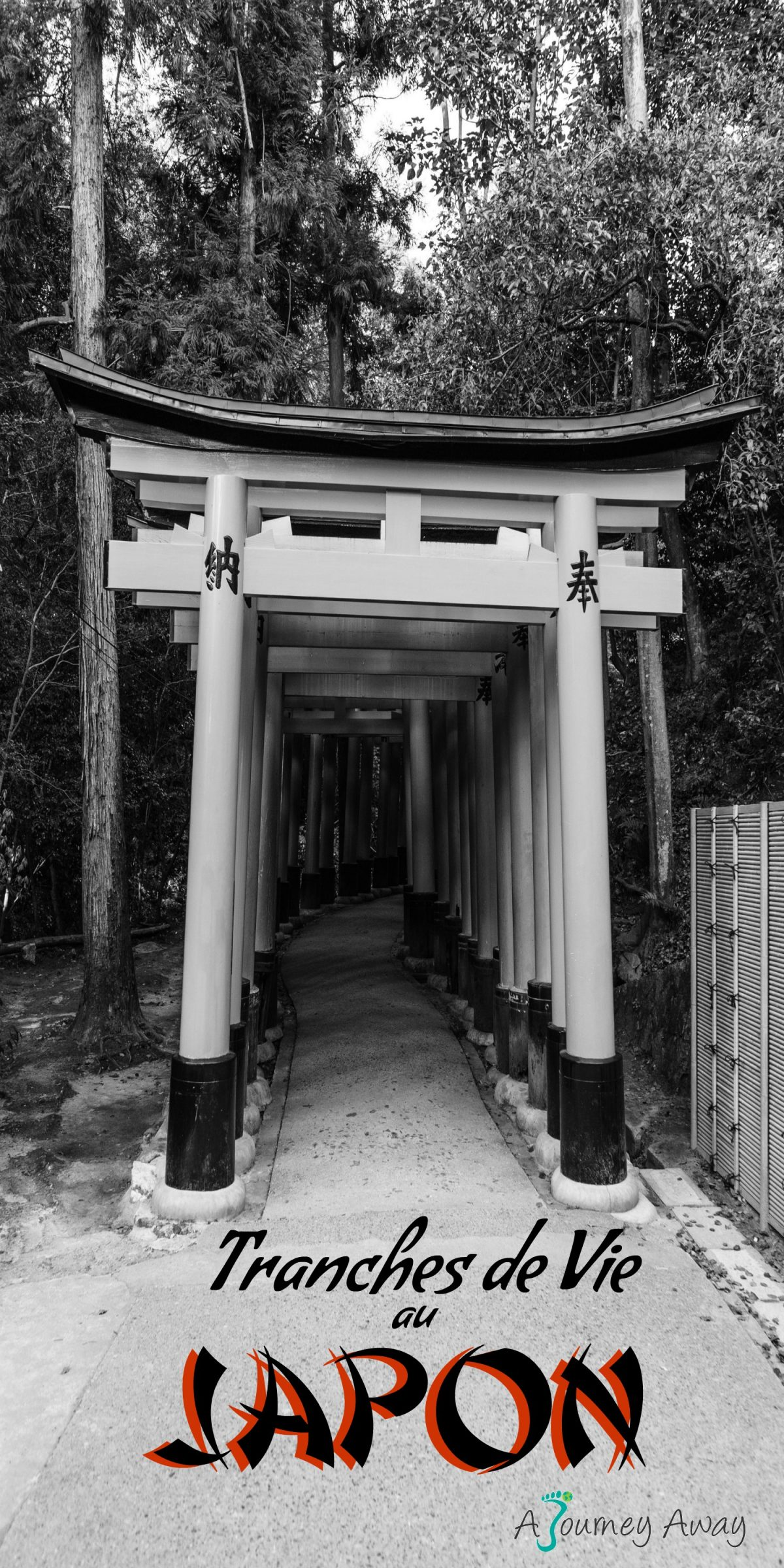 Découvrez la vie au Japon à travers quelques photo | Blog de voyage A Journey Away